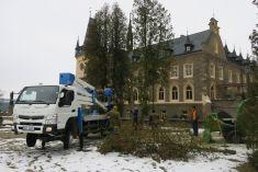 Kácení stromů předzámkem