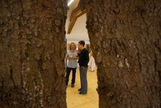 Vernisáž výstavy Krajiny, ruiny, orkány 3. 8. 2012