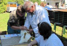 Výstava chovatelů drobného zvířectva 15. 9. 2012