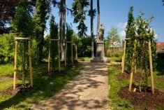 Obnova veřejné zeleně 7. 6. 2014