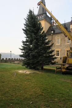 Instalace vánočního stromku u zámku 19. 11. 2019