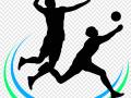 Volejbal muži 1